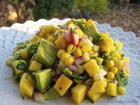 Mango Corn Salsa Over Lemony Chicken Breasts | © Urban Cottage Life.com
